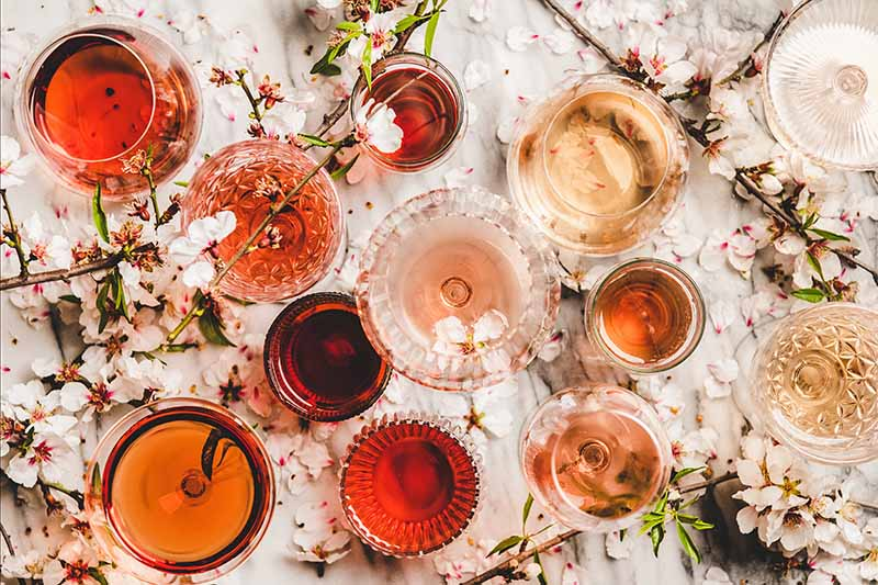 Hold The Rosé: The Rosé Market Begins To Consolidate