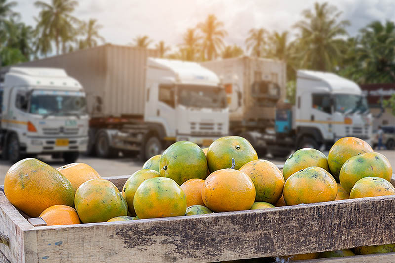 How Analytics Can Help Make the Food Supply Chain Safer and More Efficient
