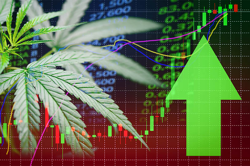 Leveraging Analytics in the Emerging Cannabis Industry